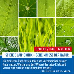 Bionik – Geheimnisse der Natur