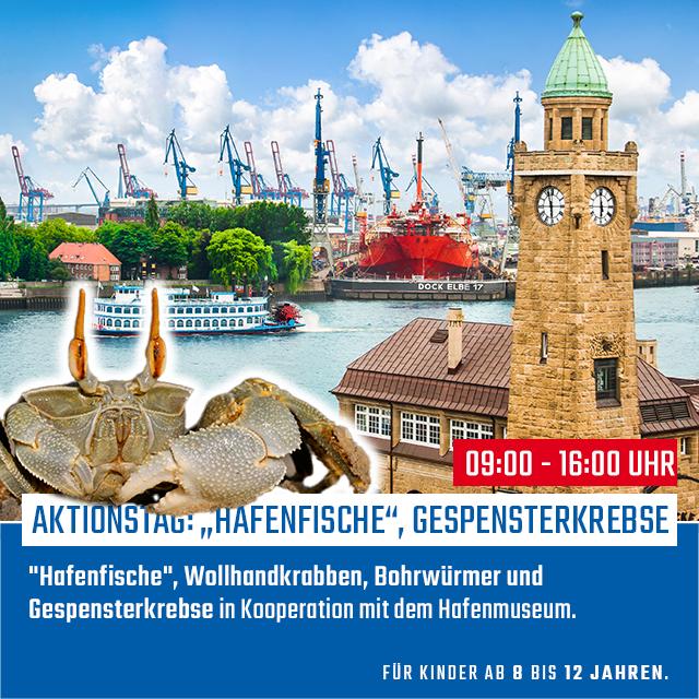 Aktionstag: Hafenmuseum   11.03.2020   09:00 - 16:00 Uhr